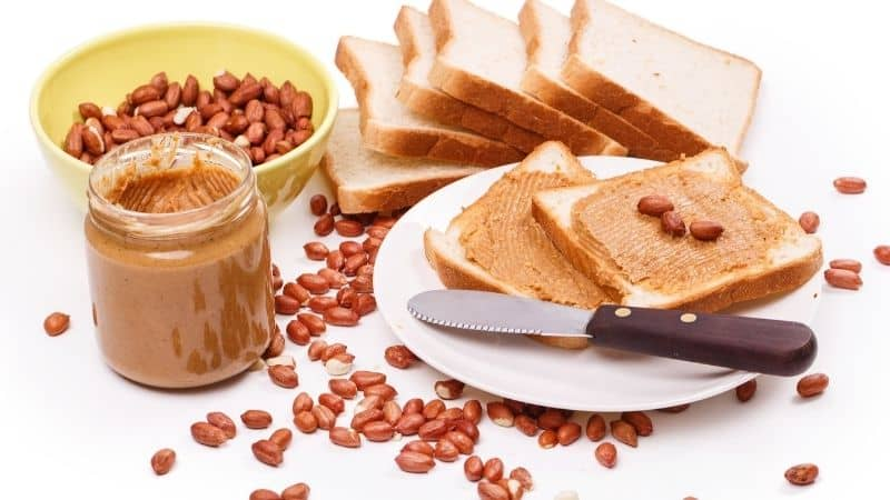 The Best Peanut Butter in India 2021