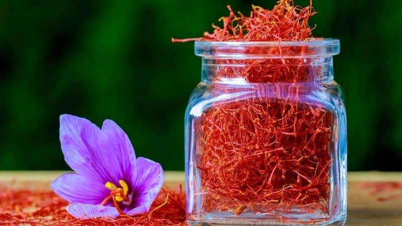 Best Saffron Brand in India