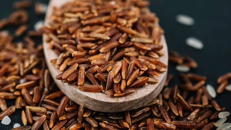 Best Brown Rice in India