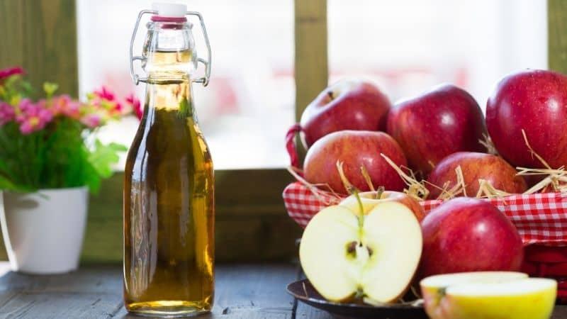 Best Apple Cider Vinegar in India 2021