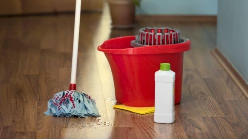 Best Floor Cleaning Mop in India 2021
